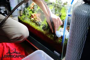 Aquarium Umzug - Wasser ablassen mit normalem Schlauch