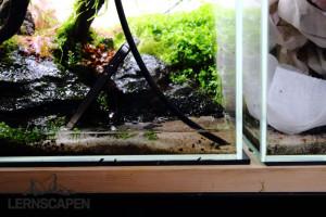Aquarium Umzug - Wasser ablassen mit Luftschlauch