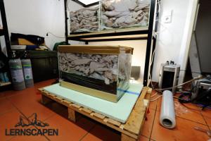 Aquarium Umzug - Fertig für den Versand