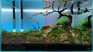 Aquarium einrichten Tipp: LED Hintergrundbeleuchtung