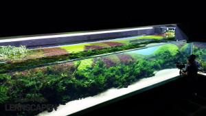 Forests Underwater - Stand 22.04.2015 Bild Filipe Oliveira