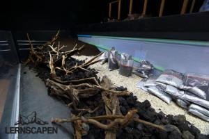 Forests Underwater - Aufbau der Hügel