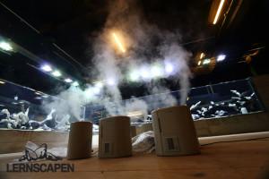 Forests Underwater - Luftbefeuchter im Dauerbetrieb