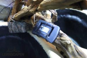 Forests Underwater - Mit Kunststoff ummantelte Gewichte für die filigranen Wurzeln