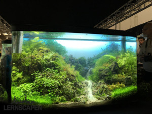 Aquascaping-Wettbewerb-HannoverScape2016-IMG_1074