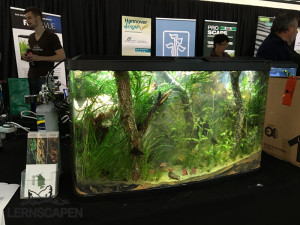 Aquascaping-Wettbewerb-HannoverScape2016-IMG_1082