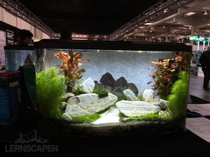 Aquascaping-Wettbewerb-HannoverScape2016-IMG_1083