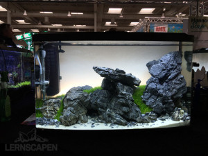 Aquascaping-Wettbewerb-HannoverScape2016-IMG_1084